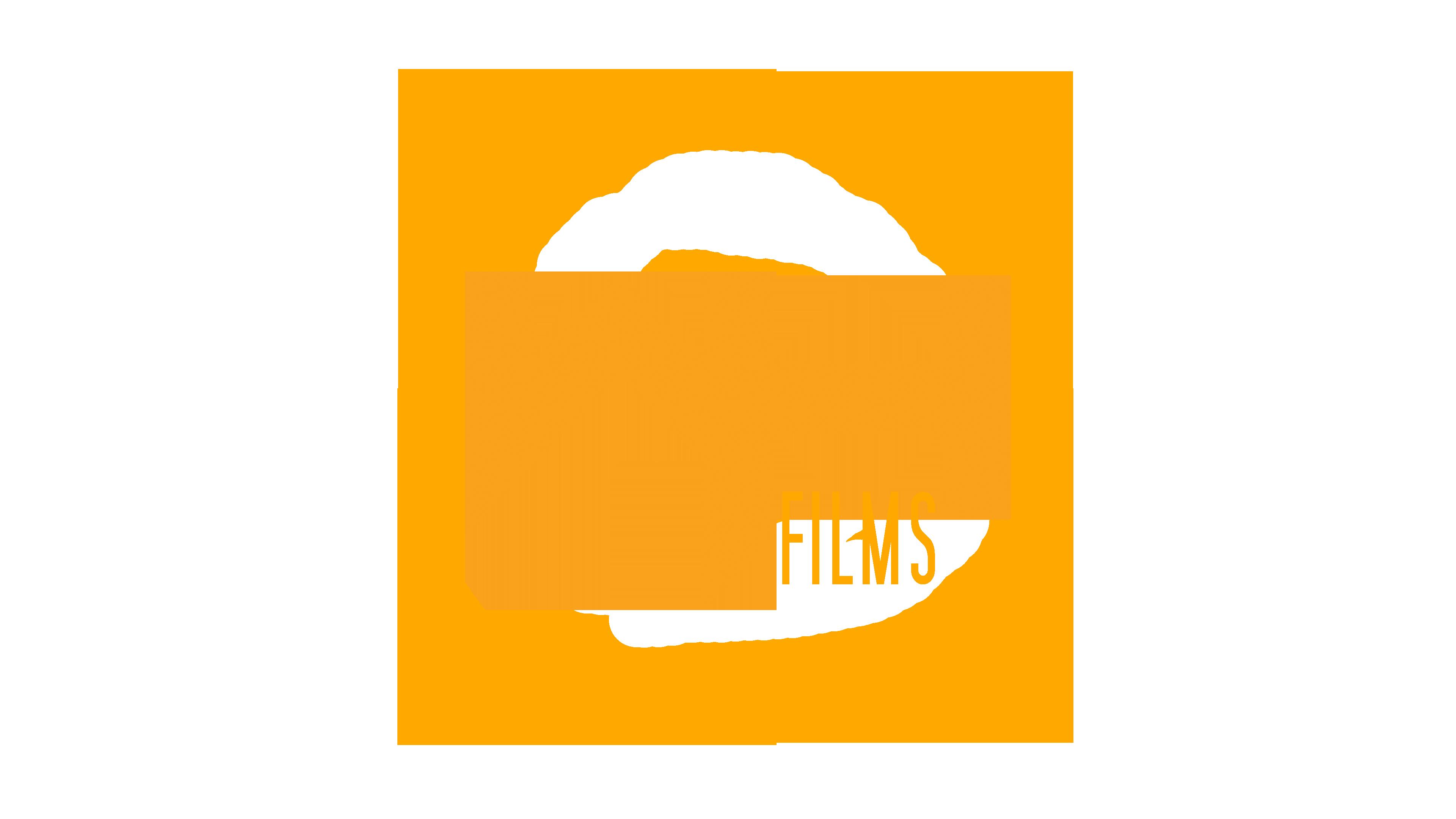 Ward Hopstaken Films Logo